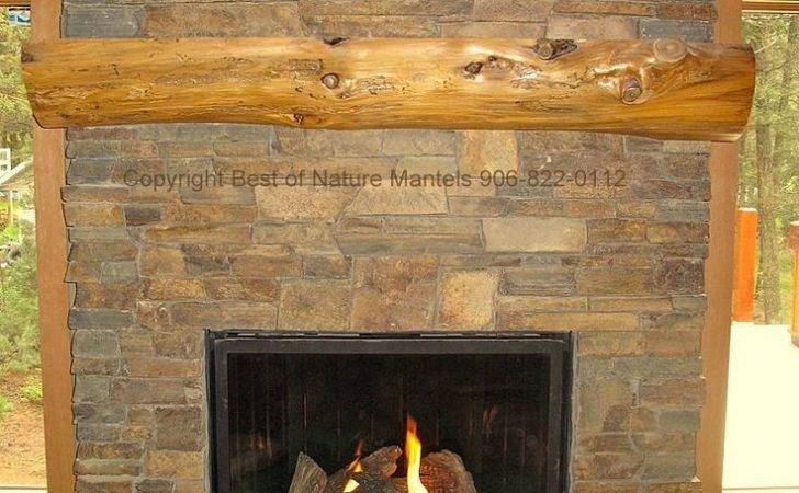 Fireplaces Pinterest Fireplace Inserts Gas