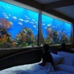 Fish Tank Bed Headboard Bedroom Wall