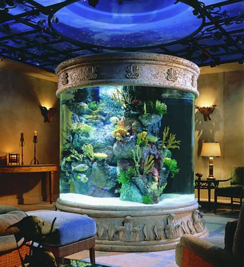 Fish Tank Room Inside Wall