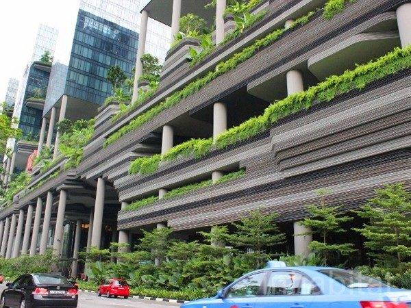 Five Examples Vertical Gardens Including Preview World