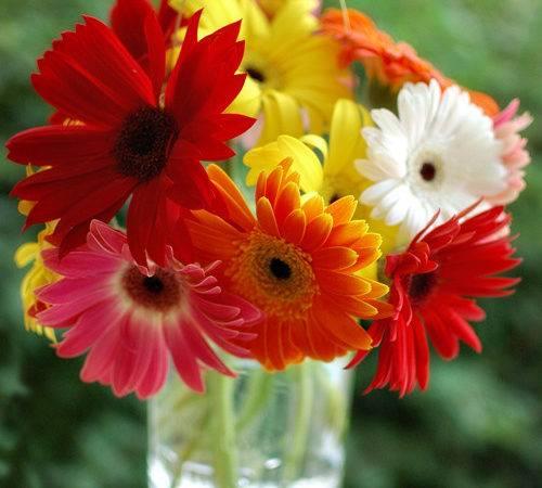 Flower Diy Bouquets Hanging Mason Jars