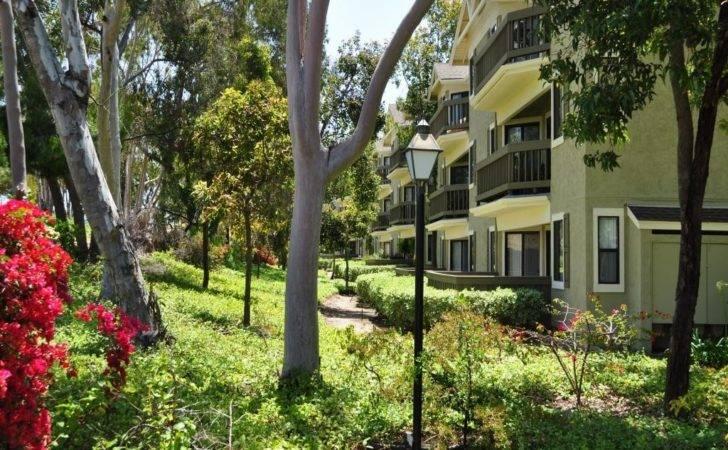 Flower Fields Apartments Carlsbad Walk Score