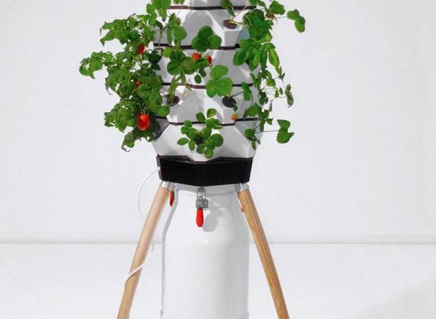 Fogponic Vertical Garden System Urban Gardens