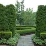 Formal Graden Path Arborvitae Boxwood Traditional Landscape