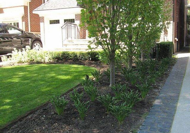 Front Lawn Land Scaping Green Escapes Pinterest Photos