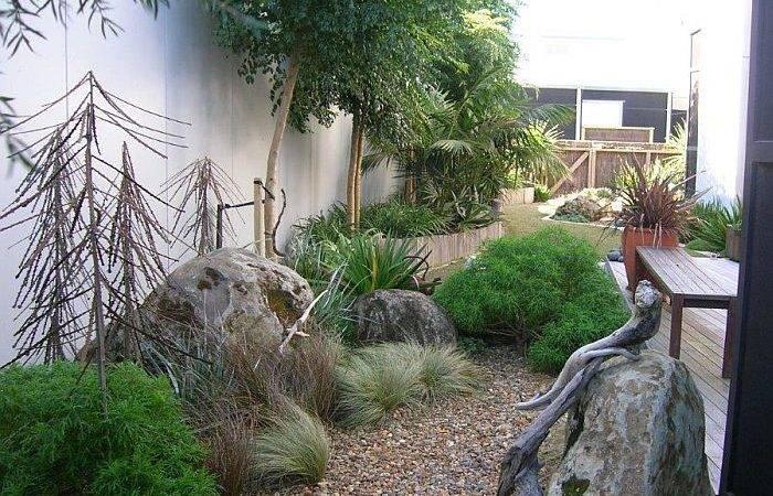 Garden Advice Tumbleweed Coastal Plants Matakana Warkworth
