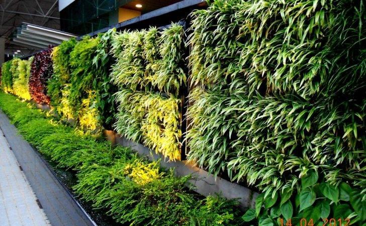 Garden Concept Buildings Greenwall Vertical System