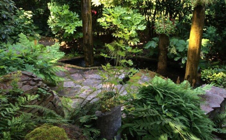 Garden Grotto Designs Bellevue