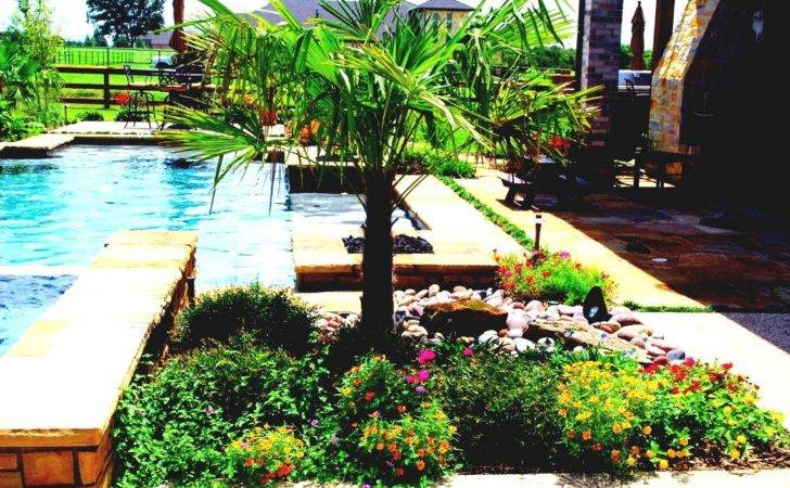 Garden Ideas Swimming Pool Landscaping Perfect Cool
