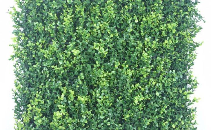 Garden Screens Hedge Tiles Boxwood Buy