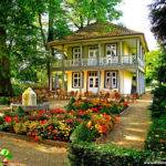 Gardening Beautiful House Garden