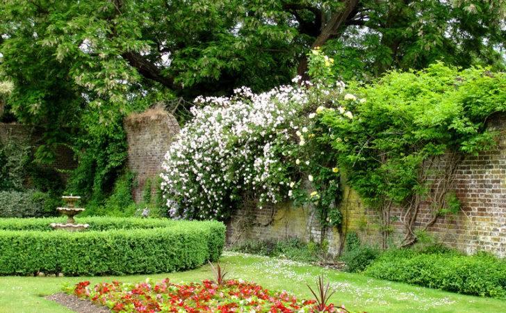Gardening Landscaping Pinterest Herbs Garden Small Backyard