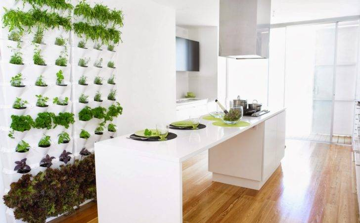 Genius Kitchen Designs Want Create Your Home
