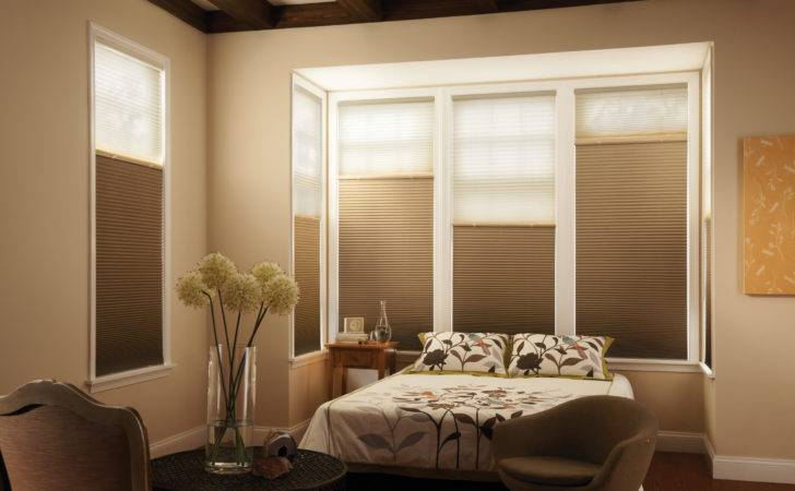 Graber Blinds Blind Mice Window Coverings
