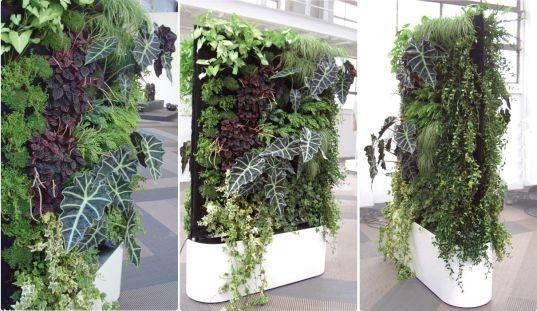 Green Design Gardening Interior Greenworks Plantwall Living Walls