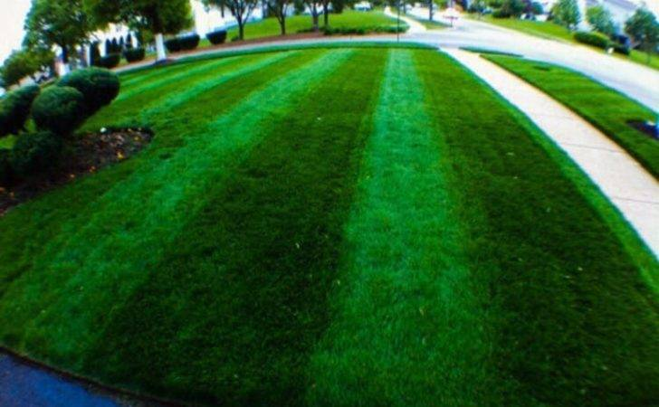 Green Escape Property Maintenance Landscaping Huntley United