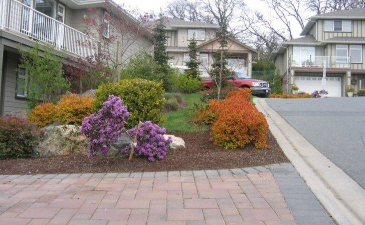 Green Escapes Landscaping Tree Pruning Projects