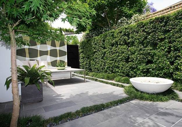 Green Fence Design Ideas Yard Landscaping Decorating Plants