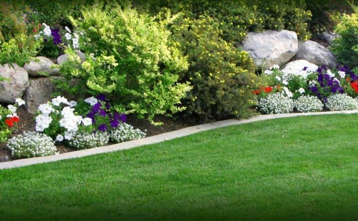 Green Flowers Home Garden