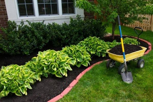 Green Ideas Mulch Alternatives