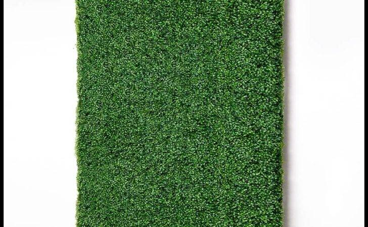 Green Wall Panel Fake Boxwood Hedge Artificial Plants Unlimited