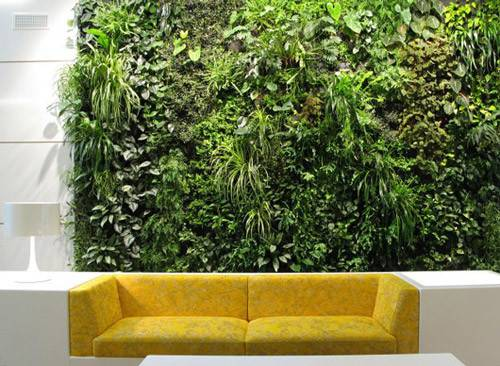 Green Walls Like Other Interior Plants Can Bring Slice Nature