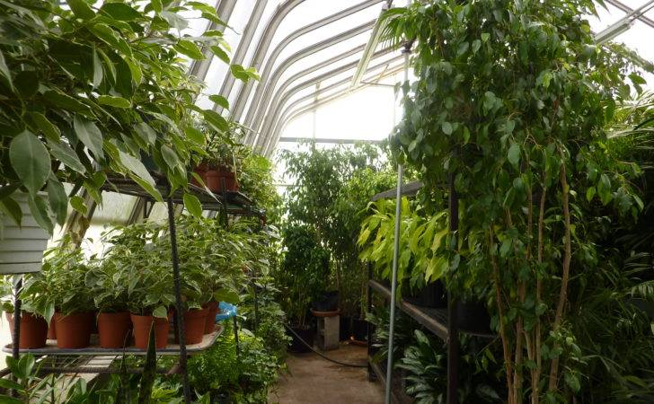 Greenhouse Interior Design Ideas Besides