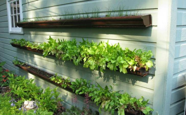 Gutter Planters Learning