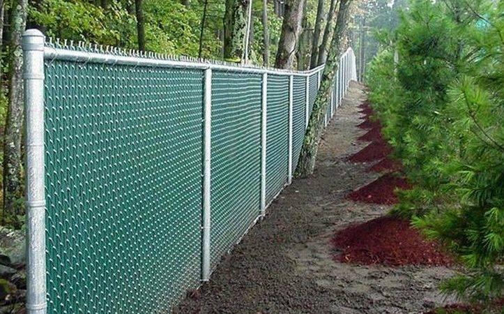 Hedge Slats Chain Link Fence