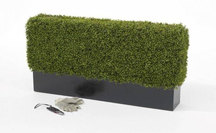 Hedging Artificial Boxwood Hedge Set Fibreglass Trough