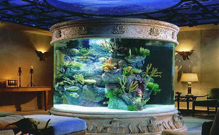 Home Accessories Fish Tank Decor Ideas Dome Design