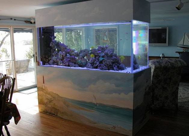 Home Aquarium Beautiful Elegant Trendy Stylish Interior