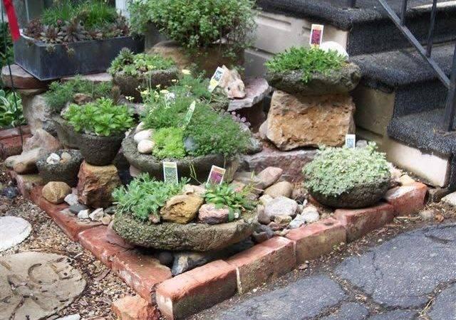 Home Garden Design Ideas Beautiful Homes