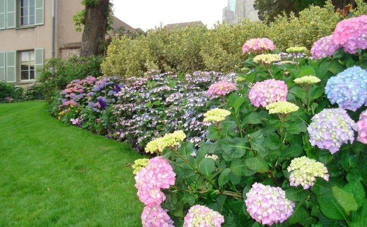 Home Garden Landscape Ideas Photograph Unique Des