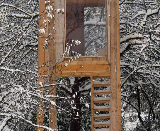 Home Garden Standing Tree House Build