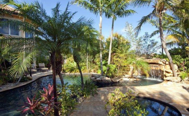Home Gardening Landscaping Palm Trees Ideas Backyard