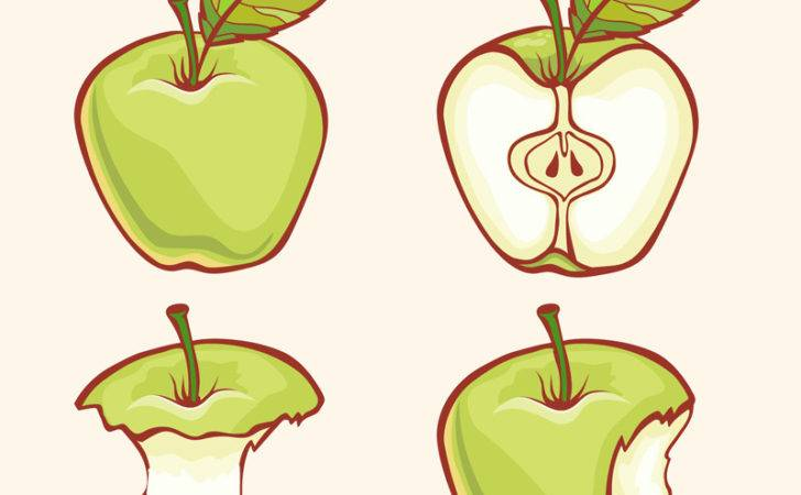 Home Painted Green Apple Design Vector