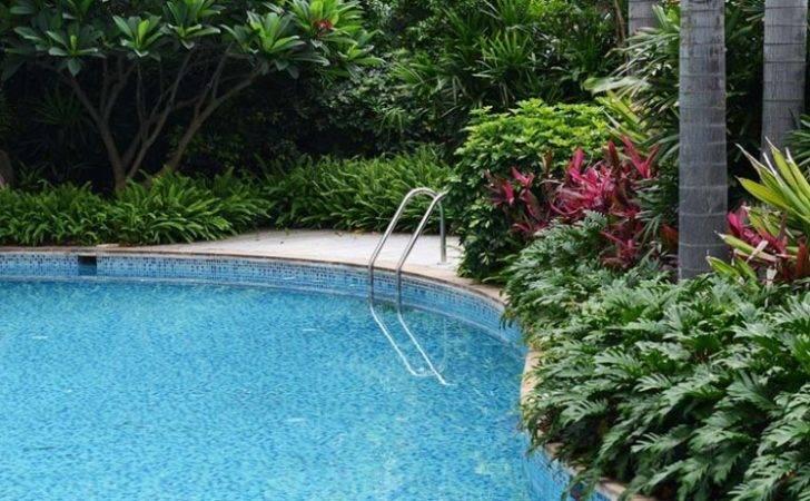 Home Poolside Blog Design Softening Pool Hardscapes