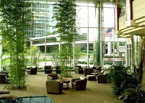 Home Portfolio Corporate Lobby