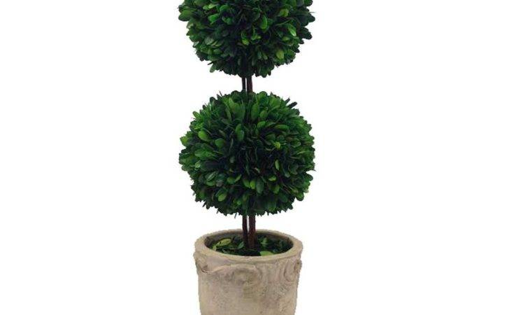 Home Products Preserved Boxwood Double Ball Footed Pot
