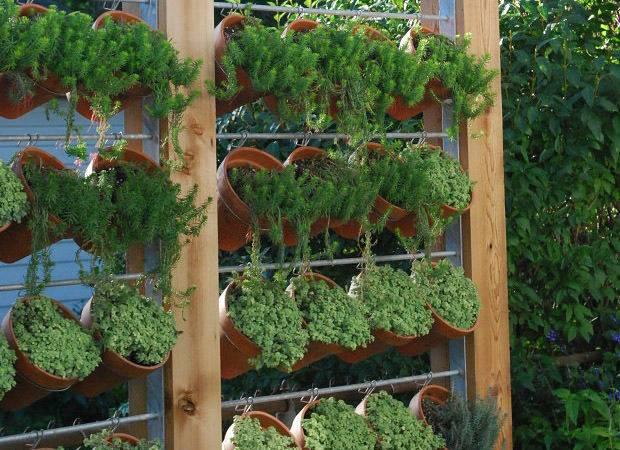 Home Style Need Privacy Diy Garden Ideas