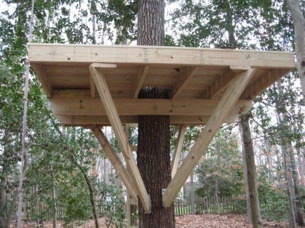 Home Treeless Tree House Plans