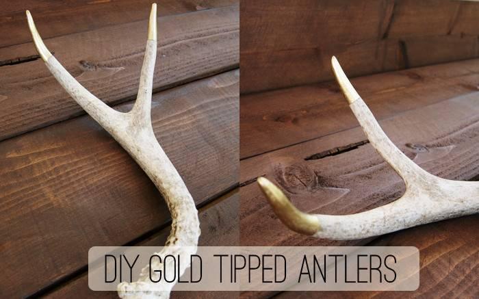 Homemade Deer Antlers Like Antler Sheds