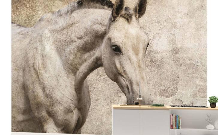 Horse Girls Teenager Wall Mural Room Decor Veve
