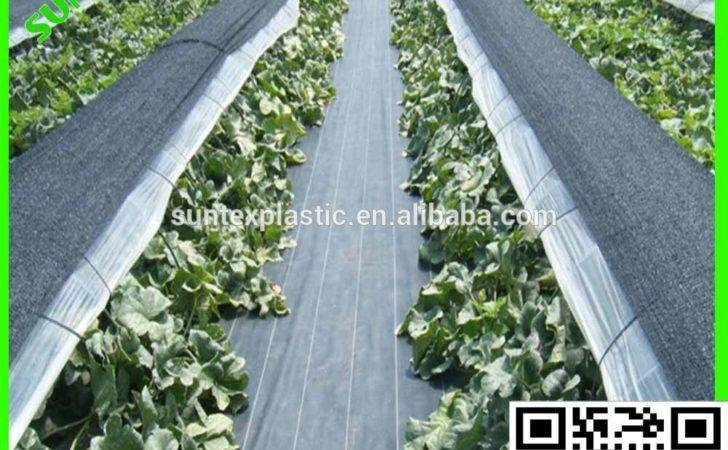 Hot Sale Weed Block Fabric Staples Control Mat Greenhouse Eco