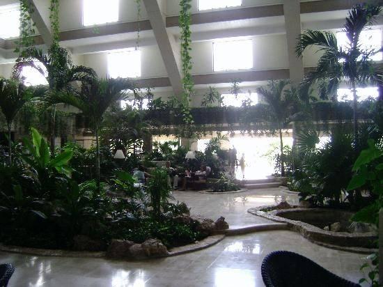 Hotel Riu Caribe Lobby Filled Lush Plants