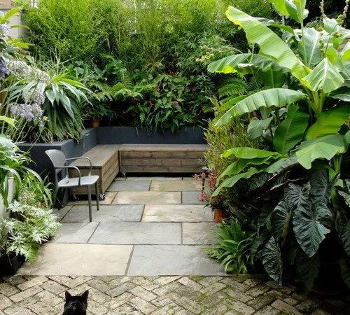 Houzz Tropical Patio Design Ideas Remodel