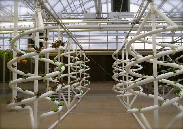 Hydroponic Possibilities Material Strategies