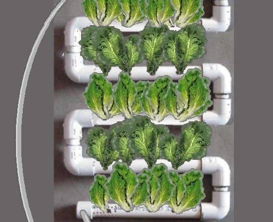 Hydroponic Vertical Garden Interior Design Ideas Exclusive Home
