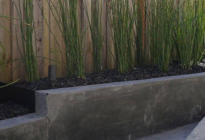Idea Fence Line Garden Lounge Pinterest